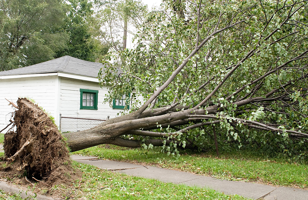Hail Damage Insurance Claims Saint Charles MO - Edwards Roofing - windDamage